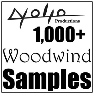 Product picture Woodwinds Samples